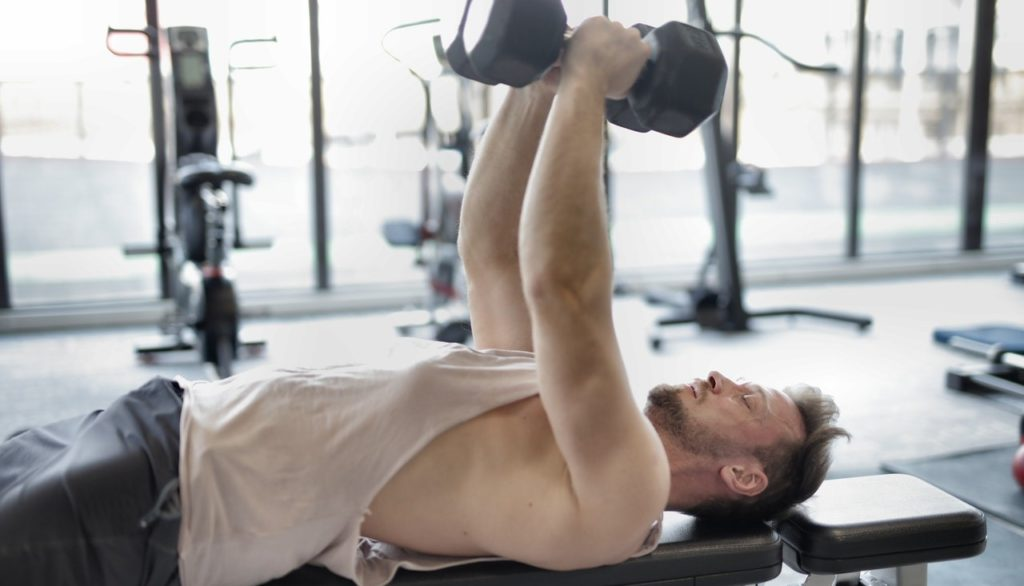 programme musculation half body